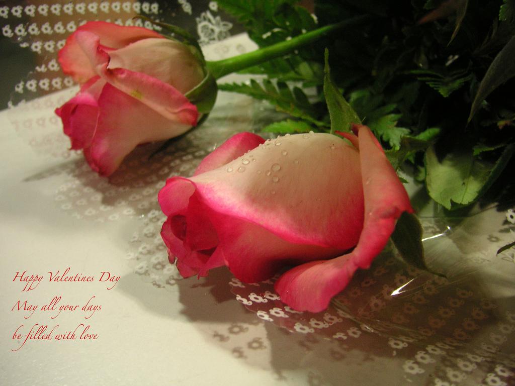 Top Valentine's Day Dates